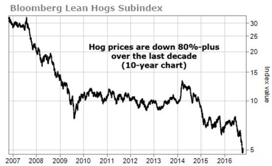 hogs-price